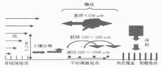 风蚀发生机理及其防治技术